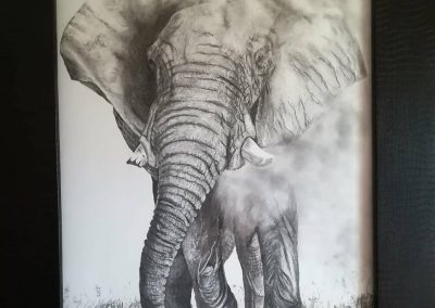 Charcoal elephant shaking off dust1_o