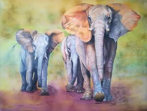 Medium is artists coloured pencils.  It took me months to do this but it is my way of paying tribute to these amazing animals.